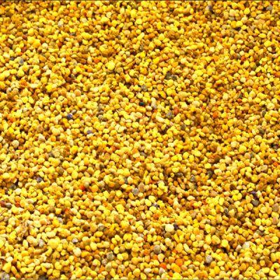 vrac de pollen frais produit en France