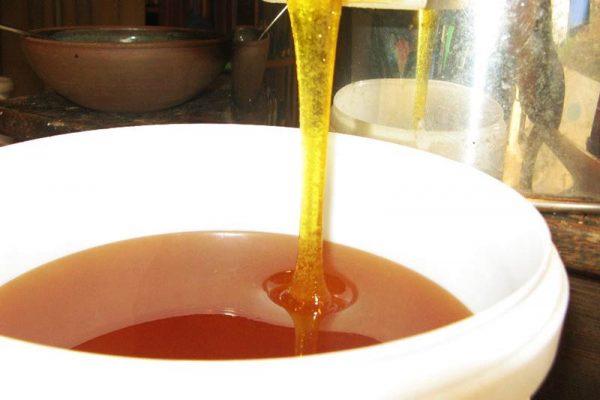 remplissage d'un seau de miel