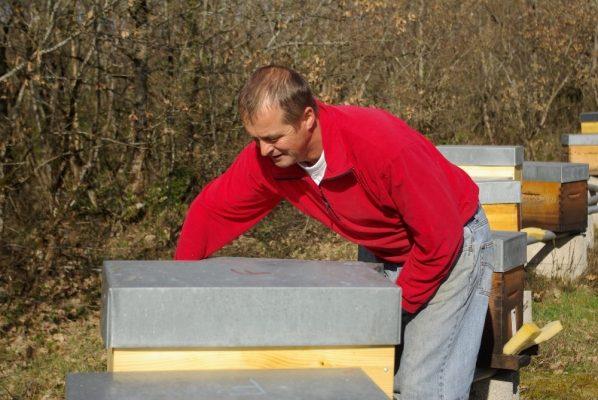 transhumance ruchers du tigou - France