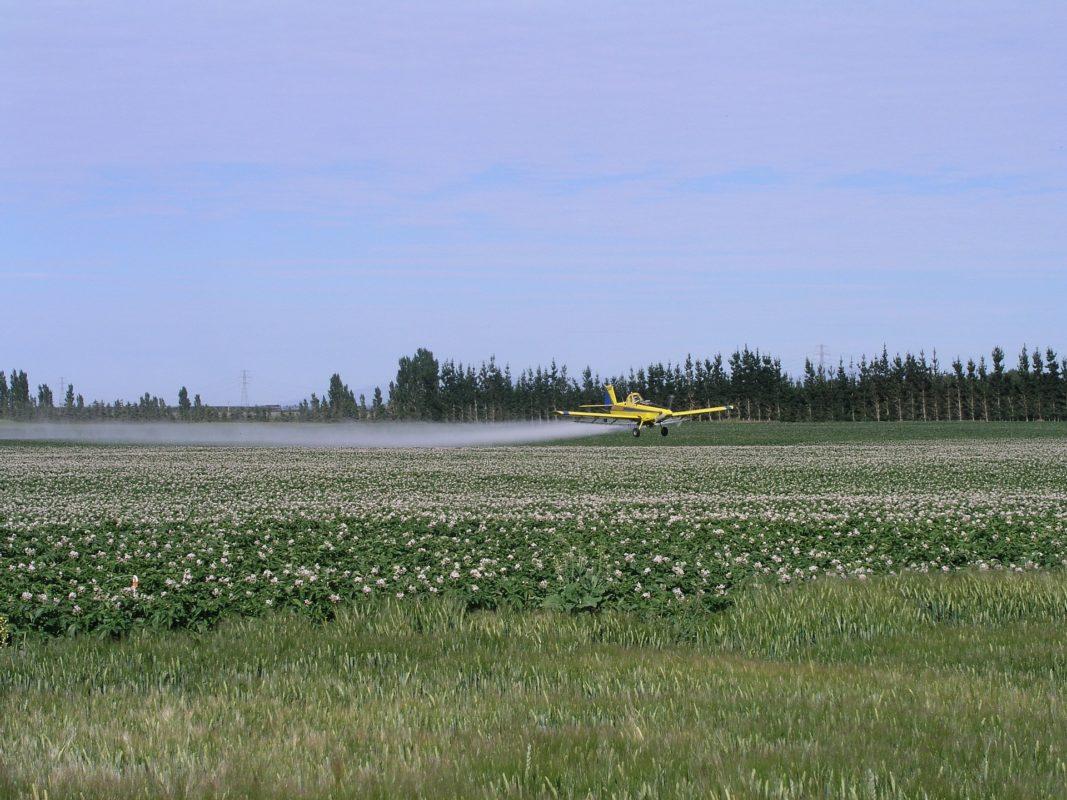Epandage d'un insecticide néonics par avion.