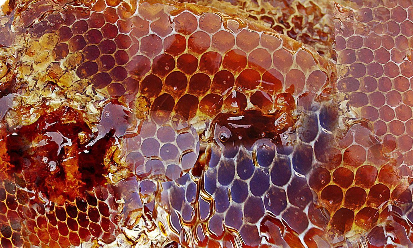 pouvoir antioxydant du miel